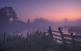 Barbed Mist