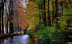 Dutch Autumn (JaapCom) Tags: jaapcom autumn herfst herbst trees water gracht wezep ijsselvliedt holland dutchnetherlands natural natuur veluwe gelderland landscape landgoed landschaft farmhouse