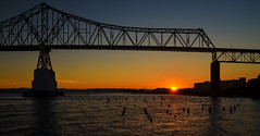 Sunrise Suspense (Carl's Captures) Tags: sunrise astoria–meglerbridge steel cantilever truss spans columbiariver astoriaoregon morning dawn thepacificnorthwest nautical maritime architecture clatsopcounty landscape us101 highway summer august outdoors piers shoreline trusses beams buttresses structure support water horizon orange blue engineering design sky skyscape seascape suspense daybreak silhouette framing seaspan nikond5100 tamron18270 lightroom5 photoshopbyfehlfarben thanksbinexo