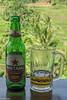 Bali, Indonesia (Yee-Kay Fung) Tags: bali beer indonesia bintang