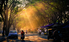 Golden Rays (Claronut Clicks) Tags: goldenlight goldenhour golden glow lights lens landscape lowlight lowlightphotography yellow evening eveningsky eveningrays streetphotography street southindia sunset sunrays sky trees travel travelphotography people photography peace splash nikon nature naturephotography naturallight natureandpeople iamnikon india beautiful bangalore karnataka