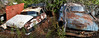 quickage-DSC_0046-DSC_0048 v2 (collations) Tags: ontario mcleansautowreckers autowreckers wreckers automobiles autos abandoned rockwood derelict junkyards autograveyards carcemeteries