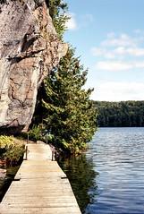 Solitaire Lake Shore Trail Boardwalk One_ (Bill Smith1) Tags: believeinfilm billsmithsphotography heyfsc kodakektar100 limberlostnaturepreserve muskoka olympusom2n zuikomc50f18lens