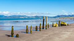 Ireland - Ring of Kerry - Rossbeigh beach (Marcial Bernabeu) Tags: marcial bernabeu bernabéu irlanda ireland irish irlandesa ring kerry anillo rossbeigh playa beach marc