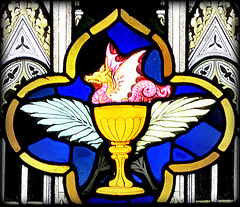 St John Snake Chalice Stained Glass (RDW Glass) Tags: saint john snake chalice dragon pink hygieia asclepius egyptian christian catholic stainedglass glasgow scotland rdwglass