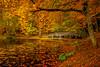 My Bridge (BeNowMeHere) Tags: ifttt 500px autumn color travel foliage bride trip escape colorful colourful landscape fall lake colour turkey bolu sit yedigöller fallcolours benowmehere colorsit mybridge