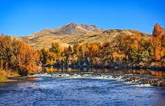 Squaw Butte View (http://fineartamerica.com/profiles/robert-bales.ht) Tags: fall forupload gemcounty haybales idaho people photo places projects riverorstreams scenic states mountain emmett sweet squawbutte treasurevalley emmettvalley thebutte beautiful awesome magnificent peaceful wow town butte gem river payetteriver southwesternidaho reflections water scenicbiway blue whitewater picturesque mountains payette riverphotography tributary robertbales snakeriver autumn yellow orange red fallcolor