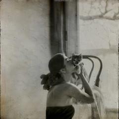 """I Look For You in the Cat's Soft Fur"" II (RapidHeartMovement) Tags: self selfportrait portrait poeticalinspirations poświatowska poetry photography monochrome conceptual squareformat rapidheartmovement"