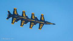 Blue Angels display their percision flying. (Bob Gunderson) Tags: blueangels california events fleetweek2017 missiondistrict northerncalifornia sanfrancisco fleetweek