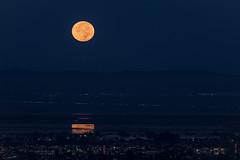Moon Set (Eastbaygirl925) Tags: bayarea bayareanature moon moonsetting morning morninglight fullmoon reflection landscape