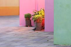 Burano (beppeverge) Tags: beppeverge burano colorful colori italiansmallvillage italy lagunaveneta veneto venezia venice vivace italia it