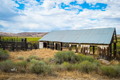 State Route 305, Lander County, Nevada (paccode) Tags: solemn landscape desert bushes brush rust nevada quiet structure summer colorful barn forgotten flowersplants field architecture trail sky creepy broken farm abandoned fence unitedstates us