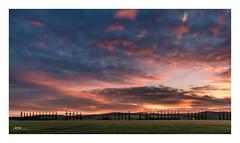 winters dusk (mmsig) Tags: veltheimohe niedersachsen deutschland de lowersaxony dusk germany sun sky landscape pappeln cremlingen klein veltheim mmsig winter sunrise eos 60d efs1018