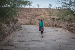 Rajasthan - Jodhpur - blue city- Mehrangharh Fort