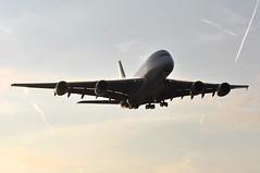 TG0910 BKK-LHR (A380spotter) Tags: wake shockwave condensation moisture water vapour vortex trail silhouette arrival landing finals shortfinals threshold belly airbus a380 800 msn0100 hstuc ไชยา chaiya thaiairwaysinternational tha tg tg0910 bkklhr runway27r 27r london heathrow egll lhr