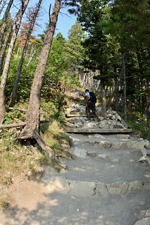 Hiking Bears Hump in 20 minutes