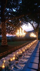 """Wedding Fairy lights • <a style=""""font-size:0.8em;"""" href=""""http://www.flickr.com/photos/98039861@N02/37724825836/"""" target=""""_blank"""">View on Flickr</a>"""
