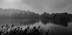 Avignon dans le brouillard (cgautriaud) Tags: avignon automne autumn brouillard fog pont bridge rhone fleuve river provence nb noiretblanc france sud south palais des papes pentax k3ii amateur