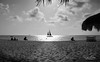 Busy Beach (mikederrico69) Tags: beach sunset summer bw beaches aruba boat sand travel trip ocean sky dusk vacation people birds clouds blackandwhite dining sea seaside black panarama reflection romantic caribbean
