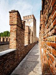 P9285386-Edit.jpg (marius.vochin) Tags: castle oneman travel museum landmark trip italy watchtower tower castelvecchio verona fortication veneto it