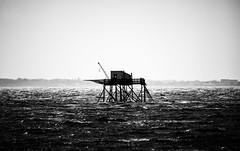La mer de l'oublie (N-Lock) Tags: photographe mer carrelet histoire peche oublie rueil malmaison pêche nell oleron canon 760d animalier paysage nb noir et blanc