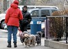 DSCN0027-3 (jpmaes81) Tags: newyork newyorkcity usa dogwalker dog chien
