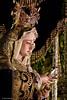 Procesion extraordinaria XXV aniversario de la refundacion de la hermandad de Jesus de la Humildad. (oscarpuigdevall) Tags: jesusdelahumildad dulcenombredemaria hermandaddelahumildad semanasantadezaragoza semanasantadearagon oscarpuigdevall momentoscofrades xxvaniversariodelahumildad cofradiahermandadprocesionzaragozaespañaaragon