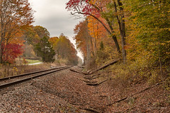 Color By the Tracks (Back Road Photography (Kevin W. Jerrell)) Tags: autumn autumncolors fall nikond7200 backroadphotography countryroads railroads leecountyva hagan autumnbeauty