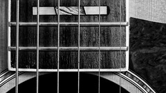 out on the western plain (ELECTROLITE photography) Tags: outonthewesternplain westernguitar guitar string strings tab westerngitarre gitarre steg bund acousticguitar music guitareacoustique guitare saiten gitarrensaiten macromondays musicalinstruments blackandwhite blackwhite bw black white sw schwarzweiss schwarz weiss monochrome einfarbig noiretblanc noirblanc noir blanc electrolitephotography electrolite