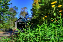 Pine Brook Bridge (Tom Mortenson) Tags: pinebrookbridge waitsfieldvermont coveredbridge wildercoveredbridge vermont countryside structure woodenstructure usa america canon 1740l canoneos canon6d newengland northamerica pinebrook rural tonemapping photomatix waitsfield