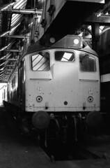 Class 25 Portrait (Stapleton Road) Tags: class25 diesel locomotive engineshed depot birkenhead millingtonstreet