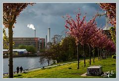 La Spree / Spree river - Berlin (christian_lemale) Tags: friedrichshain berlin allemagne deutschland mühlen strasse nikon d7100 rivière river