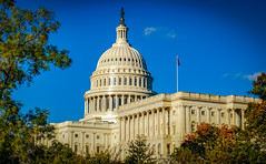 2017.10.28 DC People and Places, Washington, DC USA 9869