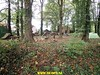 """2017-10-25            Raalte 2e dag       32 km  (50) • <a style=""""font-size:0.8em;"""" href=""""http://www.flickr.com/photos/118469228@N03/24172583258/"""" target=""""_blank"""">View on Flickr</a>"""