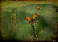 1 novembre 2017. Composizione con il dio greco della Natura, Pan, e Argo bronzeo (adrianaaprati) Tags: green countryside landscape pan god mythology ancientgreece ghost appearance apparition composition imaginary conceptual fantasy daydream argobronzeo butterfly texture textured wild wildlife montage flying
