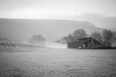 foggy morning (freiraum7) Tags: sony a7ii i minolta af 28135mm f4f45