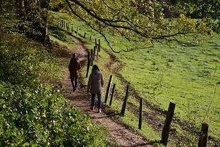 Herbstspaziergang; Aschberg, Naturpark Hüttener Berge (1)