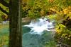 愁 (Takeuchi@photo) Tags: nature autumn stream tree river nikond750 tamron2875mmf28 japan yamagata oguni