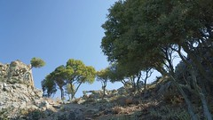 Creasta secundara din muntii Saos