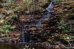 Small falls (Pierre Jaquez - JPJ Photography) Tags: childspark delawarewatergap fall outdoor pennsylvania unitedstates flickr nature