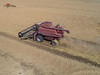Rice Harvest - Williams, CA (DreyerPictures (7 million views - Thank You!)) Tags: dji outdoor phantom4pro airialview country dreyerpicturescom drone equipment farming williams california unitedstates us aerialview viewfromthetop phantom4 dronephotography elevatedcamera drones dronefly dronelife droneworld dronegear dronespace droneshot dronesetc aerial aerialhoop aerialarts aerialphotography aeriallife fromwhereidrone dronesdaily djiglobal skypixel skypixelz skysupply dronorama droneglobe dronepixel droneoftheday dronestagram unrealdrones dronewise harvest rice