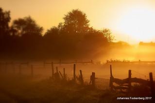 Sonne trifft Nebel