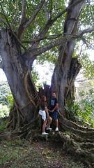 Maria Lucia & Roberto (Mauricio)