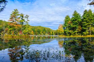 Breakneck Pond