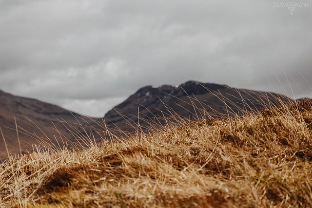 058 - Szkocja - Loch Lomond i okolice - ZAPAROWANA_