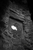 Craigmillar Castle Edinburgh A Symphony in Stone (39) (PHH Sykes) Tags: craigmillar castle edinburgh historic environment scotland