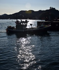 DSC_0045 (Pep Companyó - Barraló) Tags: una tarda donostia san sebastian guipuzkoa pais basc euskadi vacances josep companyo barralo mar cantabric