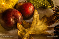 Autumn plums (ILO DESIGNS) Tags: 2017 artística bodegón creativa d3300 frutas septiembre texturing stilllife fruits fruity autumn fall food kitchen pictorial color red yellow leaf leaves brown indoor naturallight warm 105mm healthy health natural diet europe spain