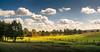 Wolkenlücke (O.I.S.) Tags: zaun fence landschaft landscape nature natur lüneburger heide heath heathlands niedersachsen lower saxony deutschland germany herbst autumn fall sonne sun sunlight wolken polfilter polarizer himmel clouds sky canon eos m3 15 45 1545 undeloh