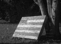 Black & White Photo Challenge (4/7) (photo_secessionist) Tags: seveninseven blackwhite bw bn flag painted board light dark contrast pentax km pentaxaf250mmlens 50mm prime